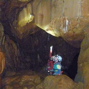graller del boixeguer-guies la vall
